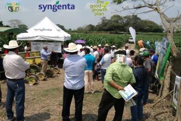 ANAC AC en alianza con Syngenta, realizaron el Día de Campo en Parcela Escuela Demostrativa del Plan para una Alimentación Sostenible (The Good Growth Plan), en el municipio de José Azueta, Veracruz, el 9 de marzo del 2018.