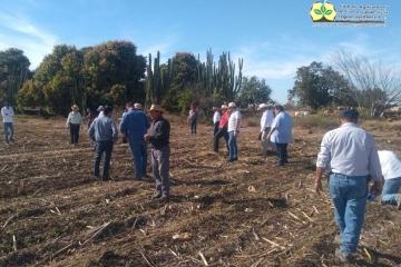 El Club de Agricultores de Conservación de la Región del Evora AC, celebró su 3er Aniversario de formación en su Segunda Etapa.