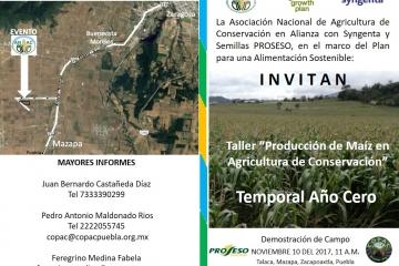Producción Sustentable de Maíz en Zacapoaxtla, Puebla
