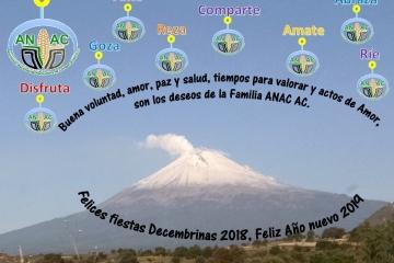 Felices Fiestas Decembrinas, Feliz Año Nuevo 2019.