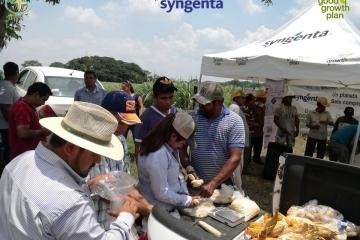 Agricultura de Conservación José Azueta, Veracruz