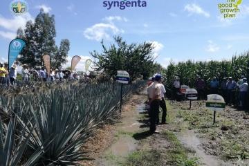 Agricultura de Conservación en San Martín Hidalgo, Jalisco.