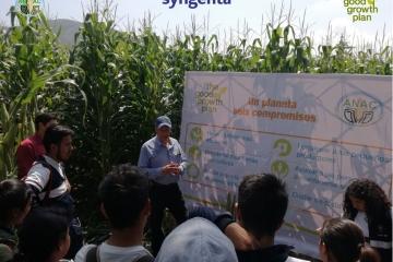 Agricultura Sustentable en CBTA 181 Tungareo, Maravatio, Michoacán.