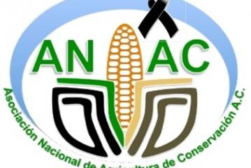 México Solidario Chiapas, Oaxaca, Guerrero, Veracruz, Puebla, Morelos y Ciudad de México